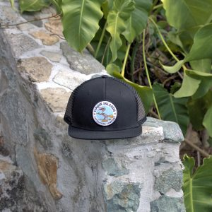 6 Panel Pelican Hat Black
